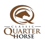 Classic Quarter Horse